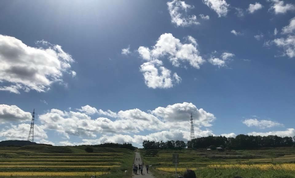 東和の棚田